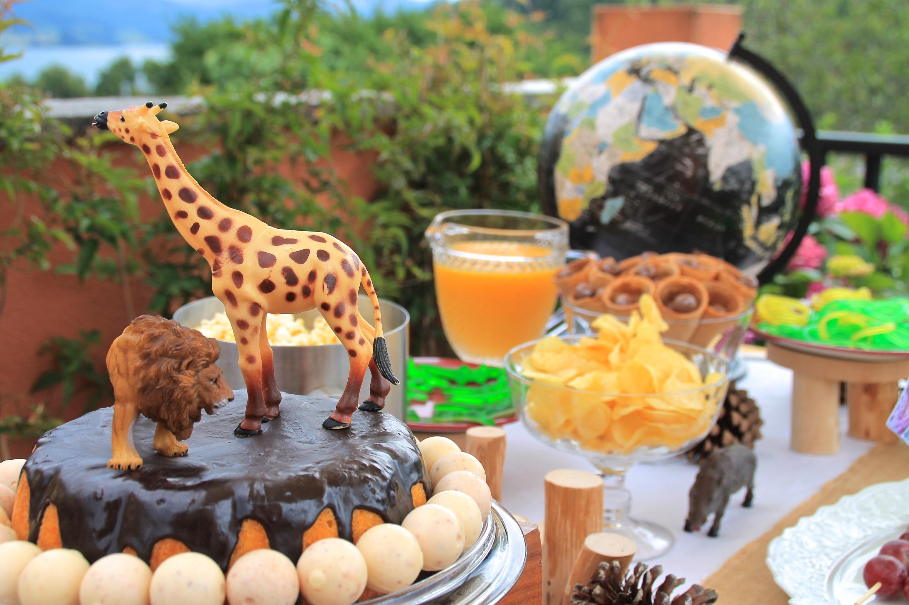 Segundo cumplea os en diez dias una fiesta de exploradores - Fiesta de cumpleanos en casa para ninos ...